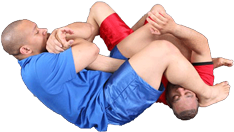 Armbar Finish